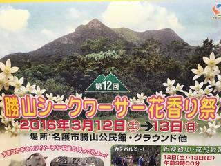 勝山シークヮーサー花香り祭り