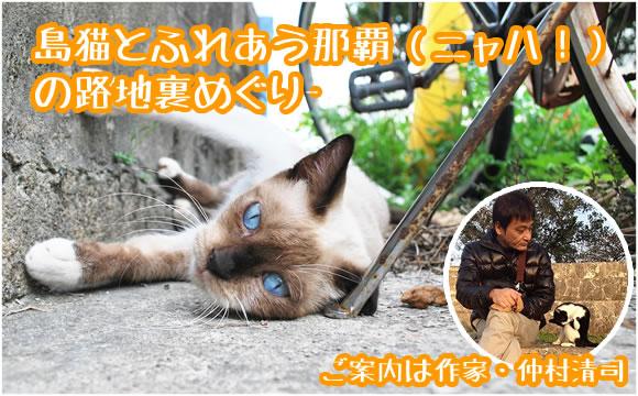 仲村清司ガイドツアー。島猫とふれあう那覇の路地裏めぐり ...