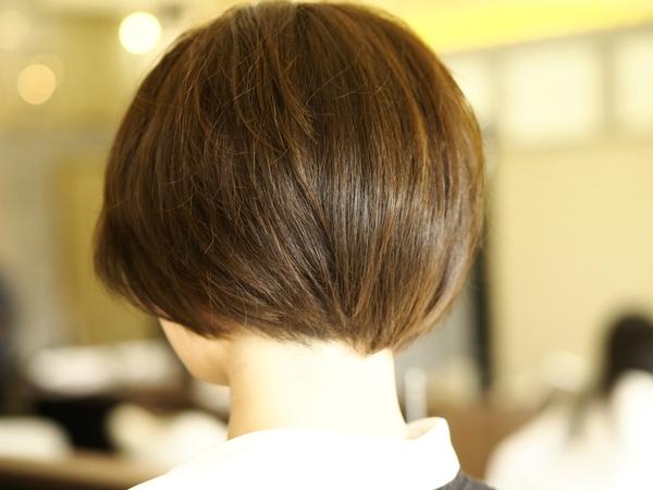 女性のヘアスタイルでツーブロックスタイル