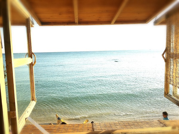 浜辺の茶屋 カウンター席