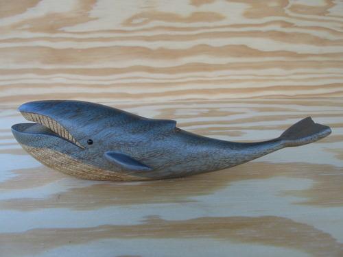 シロナガスクジラの画像 p1_11