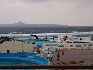 沖縄ちゅら海水族館は沖縄家族旅行にはおすすめ!